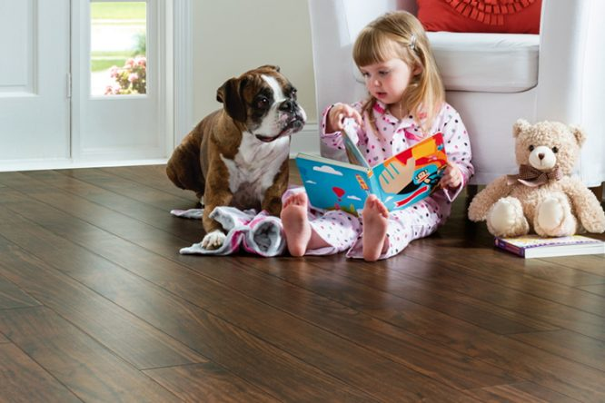 Flooring installation advice armstrong flooring for Dog friendly flooring ideas