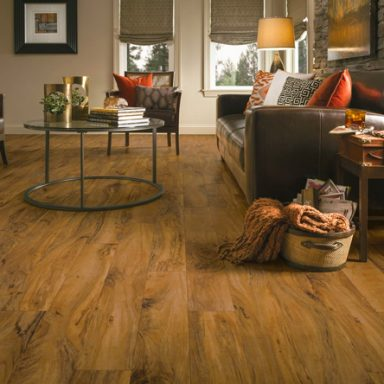 Flooring Ideas For The Living Room Living/Family Rooms